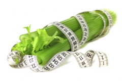 Сельдерей для похудения – идеальная диета для снижения веса