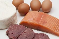 Белок в продуктах питания: бесценный протеин