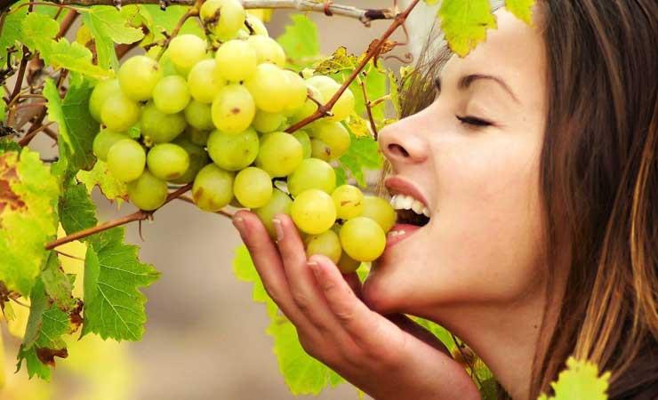 Садимся на виноградную диету