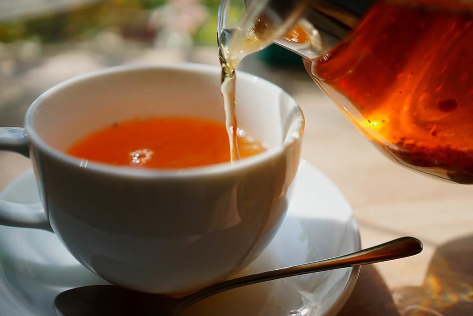 Напиток чага: полезные свойства и применение