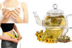 Какой чай для похудения выбрать: из аптеки, молокочай, домашний напиток из имбиря и лимона
