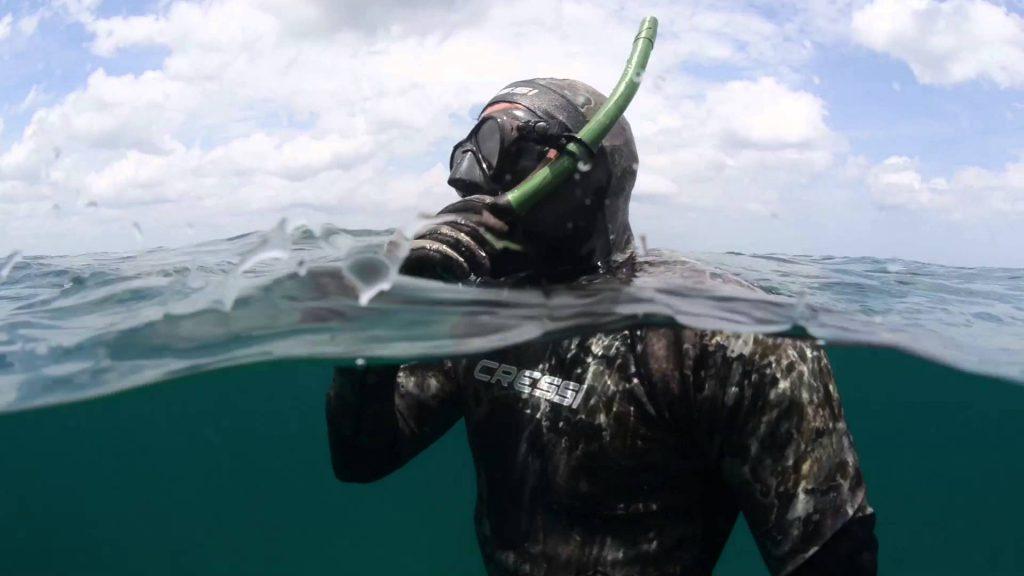 Выбираем оружие для подводной охоты: какие виды существуют?