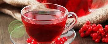 Чай из калины — рецепт здоровья!