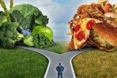 Что происходит с телом, когда вы переходите на новый метод питания?