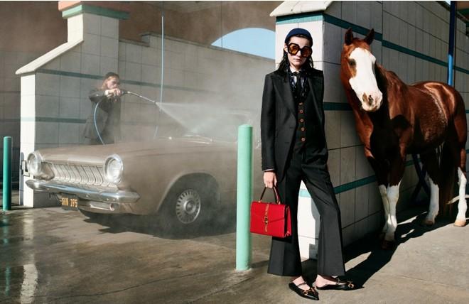 Лошадь — главная героиня новой кампании Gucci