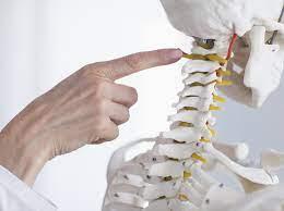 Краниобаланс: как положение черепа влияет на здоровье