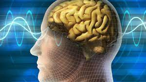 Нейробика: аэробика для мозга